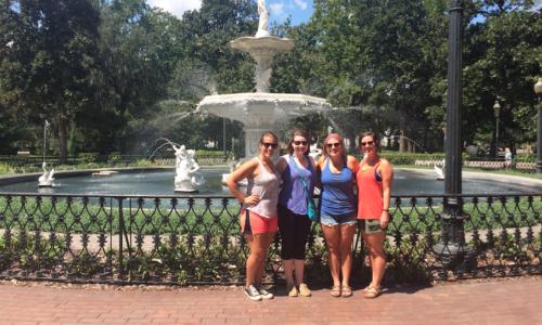 Savannah Fountain Screenshot