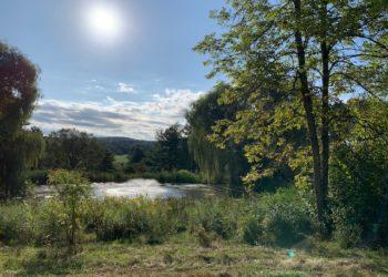 MercyFarm_pond
